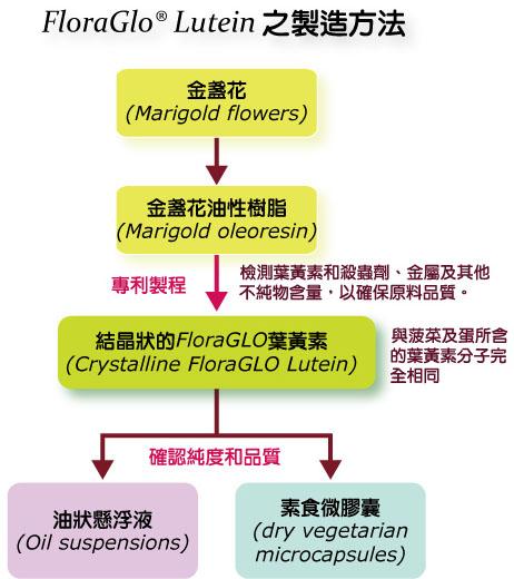 KEMIN授權 IVITAL艾維特®金盞花萃取葉黃素+玉米黃素 製造方法