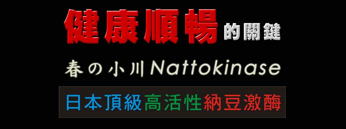 日本春の小川高活性納豆激酶紅麴軟膠囊