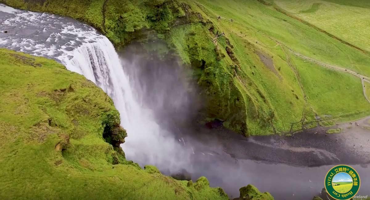 IVITAL艾維特®冰島蝦紅素DHA+EPA液體植物膠囊(60粒)全素